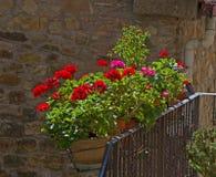 Liten tuscan balkong med blommande pelargon Royaltyfria Foton