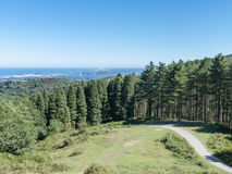 Liten väg som går in i en skog med en sikt på kusten Fotografering för Bildbyråer