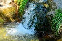 liten vattenfall Arkivfoton