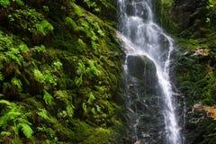liten vattenfall Arkivfoto