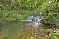 Liten vattenfall 3 Arkivbilder