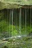 Liten vattenfall av bäckar med mossa på en avsats, Connecticut arkivfoto