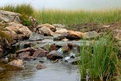 liten vattenfall för äng Arkivbilder