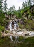 liten vattenfall för skog royaltyfria foton