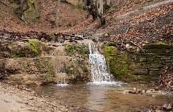 liten vattenfall för skog royaltyfri foto