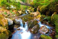 Liten vattenfall i bergskog med silkeslent skumma vatten Royaltyfri Fotografi