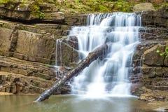 Liten vattenfall i bergskog med silkeslent skumma vatten Royaltyfria Bilder