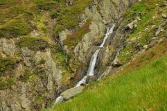 Liten vattenfall i Carpathians berg Arkivfoto