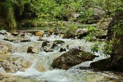 Liten vattenfall i en italiensk dal Royaltyfri Foto