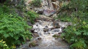 Liten vattenfall i en skog Arkivfoton