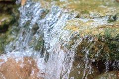 Liten vattenfall i en trädgård Royaltyfri Bild
