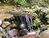 Liten vattenfall i floden på djungeln i Costa Rica under sommar Royaltyfri Foto