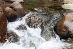 Liten vattenfall i floden på djungeln i Costa Rica under sommar Royaltyfria Foton