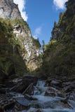 Liten vattenfall i kanjonen Fotografering för Bildbyråer
