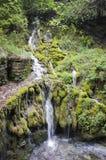 Liten vattenfall i nordliga Italien Arkivbilder