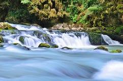 Liten vattenfall i skogen Royaltyfri Foto