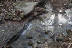 Liten vattenfall i skogström arkivbild