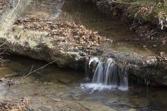 Liten vattenfall i skogström arkivbilder