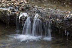 Liten vattenfall i skogström royaltyfri fotografi