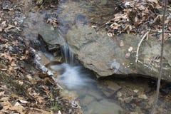 Liten vattenfall i skogström royaltyfri foto