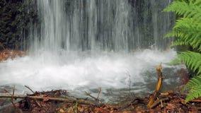 Liten vattenfall i stad i solig dag för sommar lager videofilmer