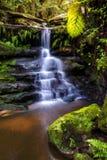 Liten vattenfall i Sydney Arkivfoto