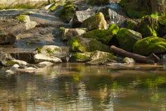 Liten vattenfall i träna Fotografering för Bildbyråer