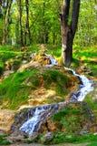 Liten vattenfall i vår Arkivbilder