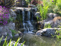 Liten vattenfall med annan natur Royaltyfria Foton