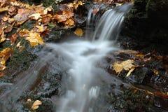 Liten vattenfall med färgrika sidor Fotografering för Bildbyråer