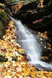 Liten vattenfall med färgrika sidor, höst i naturen Arkivbild