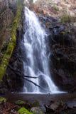 Liten vattenfall med vegetation Arkivfoto