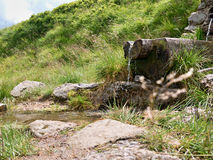 Liten vattenfall och bäck Royaltyfria Bilder