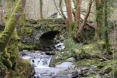 Liten vattenfall och bro, royaltyfria bilder