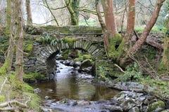 Liten vattenfall och bro, royaltyfri fotografi