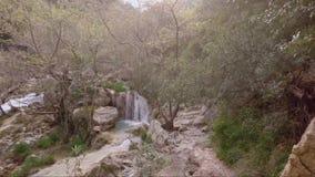 Liten vattenfall och flod stock video