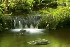 Liten vattenfall och gröna reflexioner i Hebron, Connecticut Royaltyfri Bild