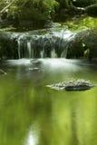 Liten vattenfall och gröna reflexioner i Hebron, Connecticut Arkivbild