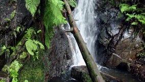 Liten vattenfall på PR1-LSA som går slingan - Lousa stock video