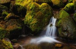 Liten vattenfall, Washington State Royaltyfria Foton