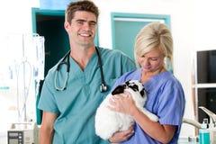 liten vet för djur klinik Arkivbilder
