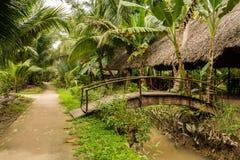 Liten vietnamesisk by i djungel runt om den Mekong deltan royaltyfri bild