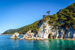 Liten vik i Abel Tasman National Park, Nya Zeeland Royaltyfria Bilder