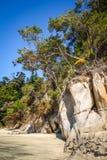 Liten vik i Abel Tasman National Park, Nya Zeeland Arkivfoton