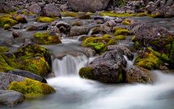 Liten vik i Hibiny berg Royaltyfri Foto