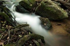 Liten vik i skogen Arkivbild