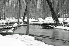 Liten vik i vintern Royaltyfri Foto