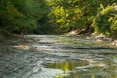 Liten liten vik på lågvatten i sen sommar arkivbilder