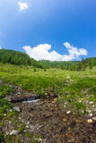 Liten vik på Mt Mirnock Royaltyfria Bilder