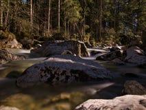 Liten vik på skogröjning med vaggar i vattnet royaltyfri foto